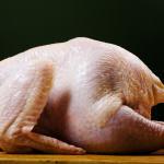 Szóstka dla kurczaka!
