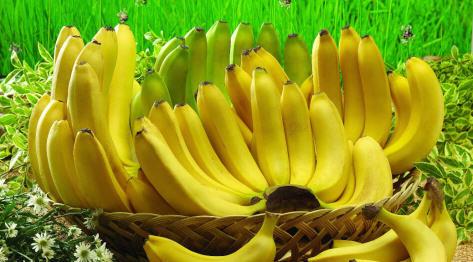 Banany – kalorie i wartości odżywcze oraz ciekawostki i sposoby na wykorzystanie kulinarne i kosmetyczne