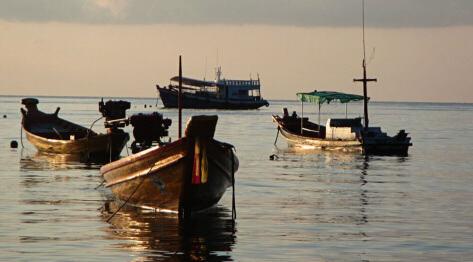 Koh Tao, Tajlandia – nurkowanie na Koh Tao, szkoły nurkowe i kurs nurkowy PADI. Informacje jak dotrzeć z Koh Samui na Koh Tao