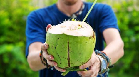 Woda kokosowa. Właściwości i wartości odżywcze wody kokosowej. Dlaczego warto pić wodę kokosową