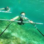 Subwing, czyli latanie pod wodą – Siquijor, Filipiny [VIDEO] i [GALERIA ZDJĘĆ]